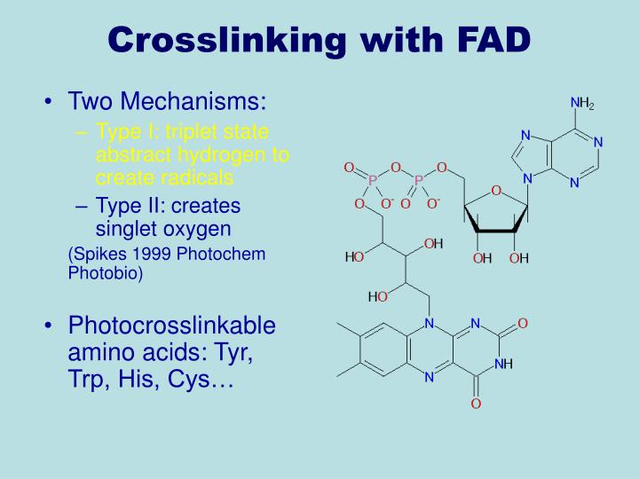 Crosslinking with FAD