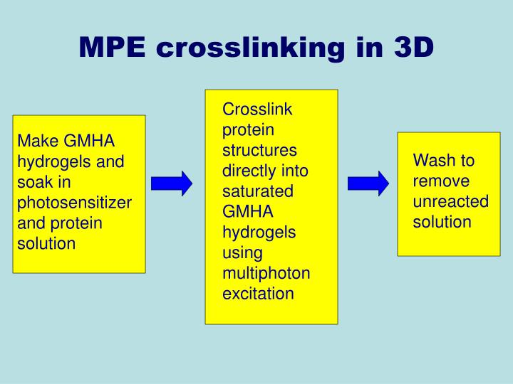 Crosslink protein structures directly into saturated GMHA hydrogels using multiphoton excitation