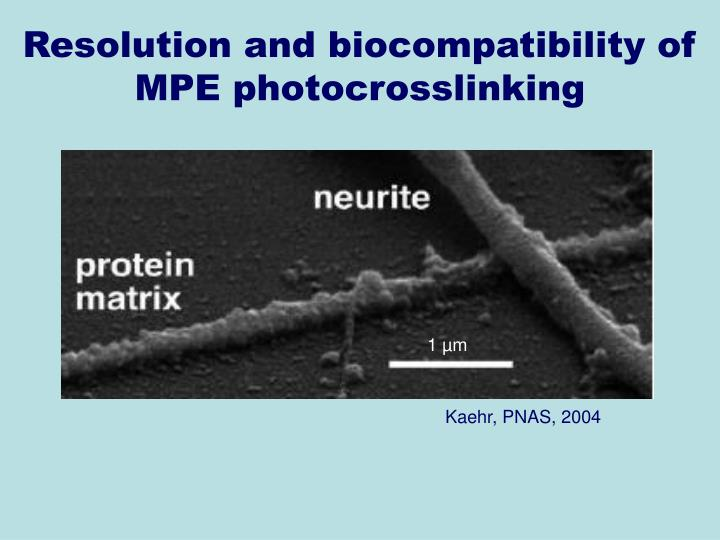 Resolution and biocompatibility of MPE photocrosslinking