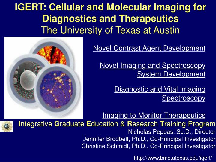 IGERT: Cellular and Molecular Imaging for
