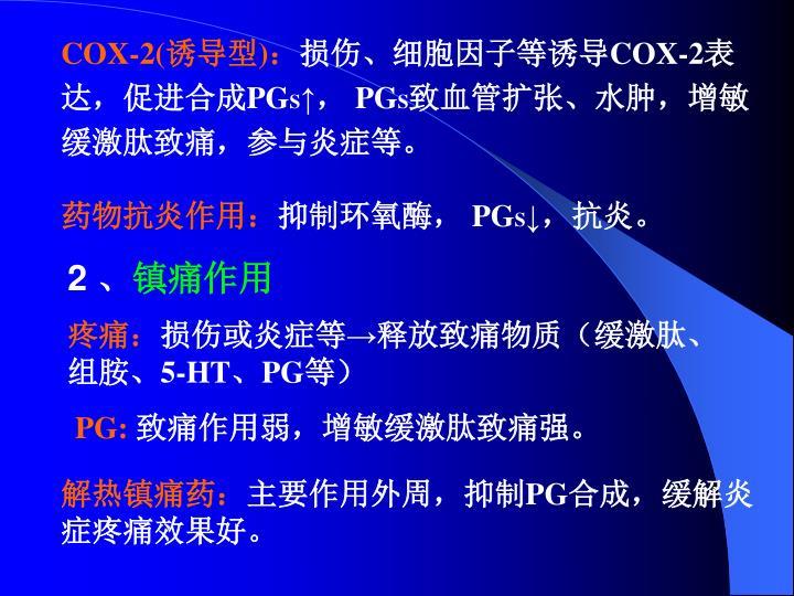 COX-2(