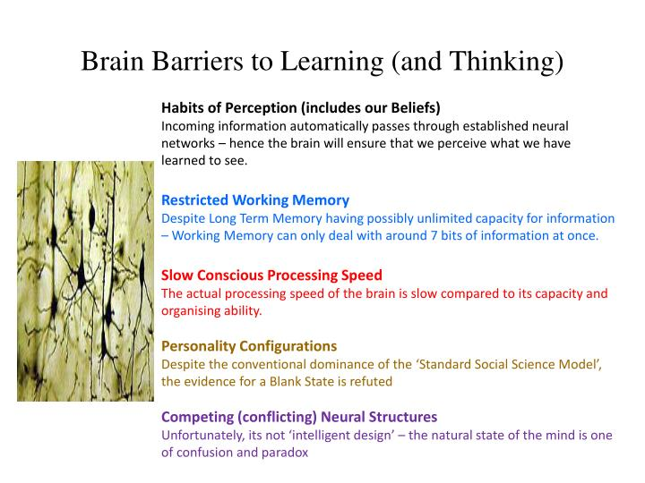 Brain Barriers to Learning (and Thinking)