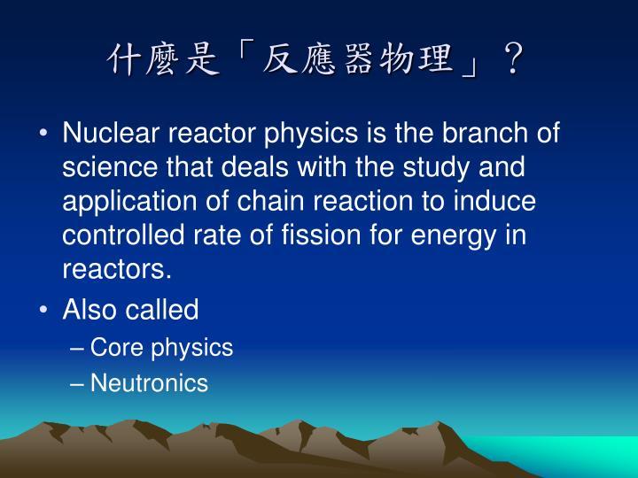什麼是「反應器物理」?