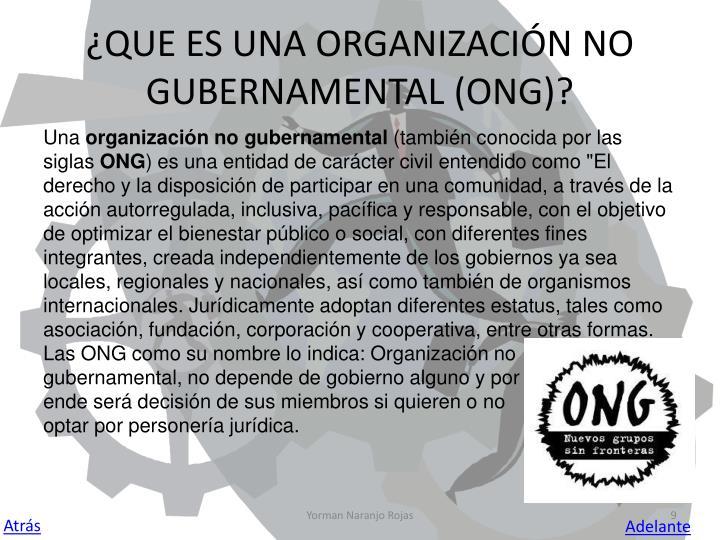 ¿QUE ES UNA ORGANIZACIÓN NO GUBERNAMENTAL (ONG)?