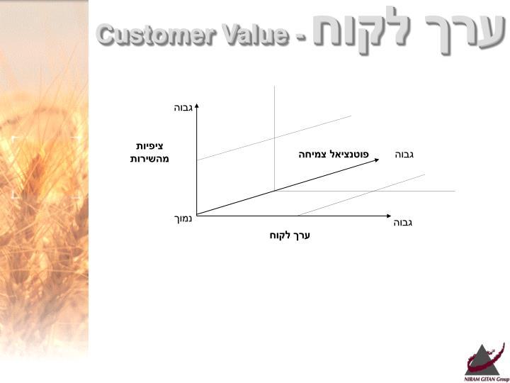 ערך לקוח