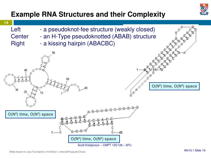 Example RNA Structures and their Complexity