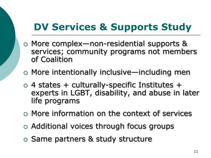 DV Services & Supports Study