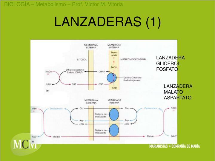 LANZADERAS (1)
