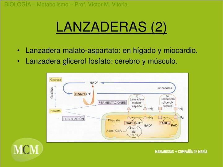 LANZADERAS (2)