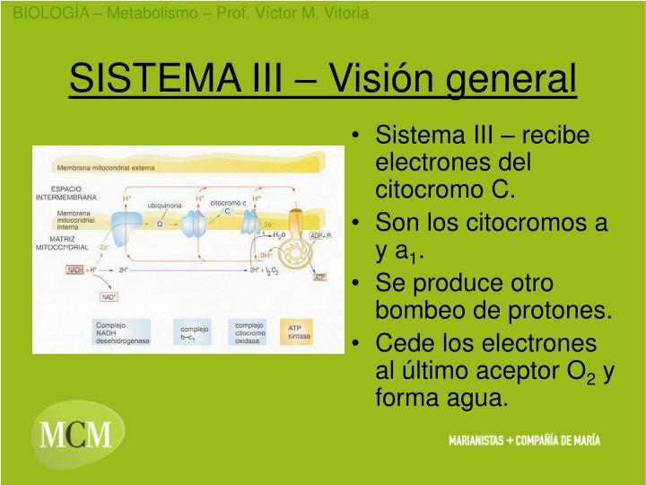 SISTEMA III – Visión general