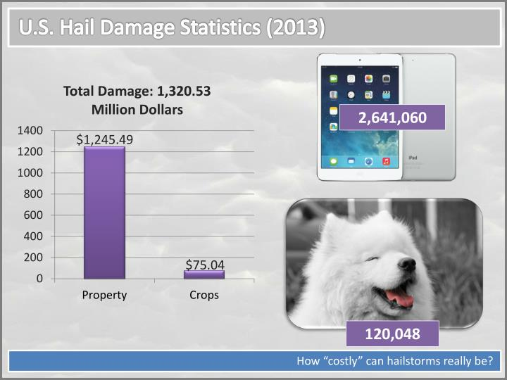 U.S. Hail Damage Statistics (2013)