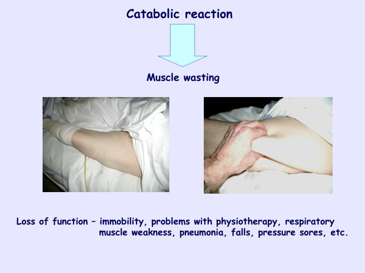 Catabolic reaction