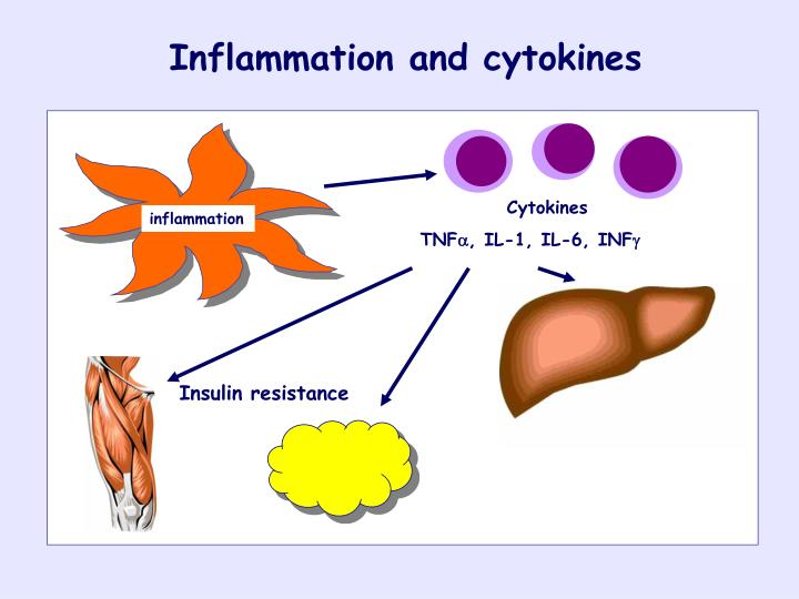 Inflammation and cytokines