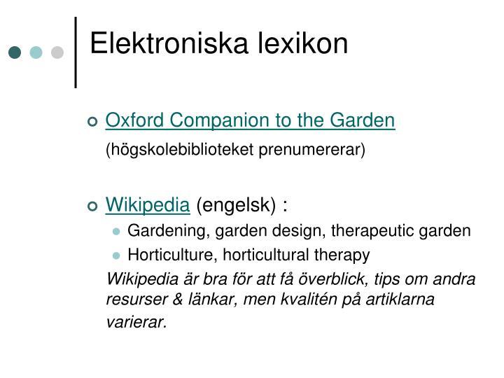 Elektroniska lexikon