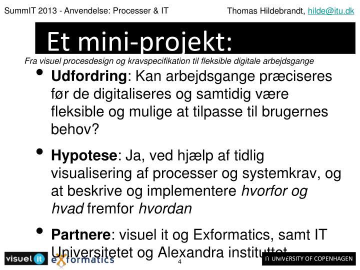 Et mini-projekt: