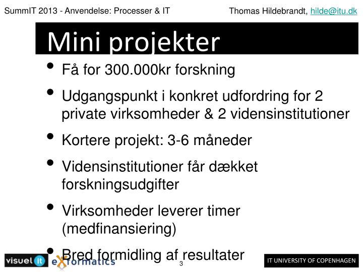 Mini projekter