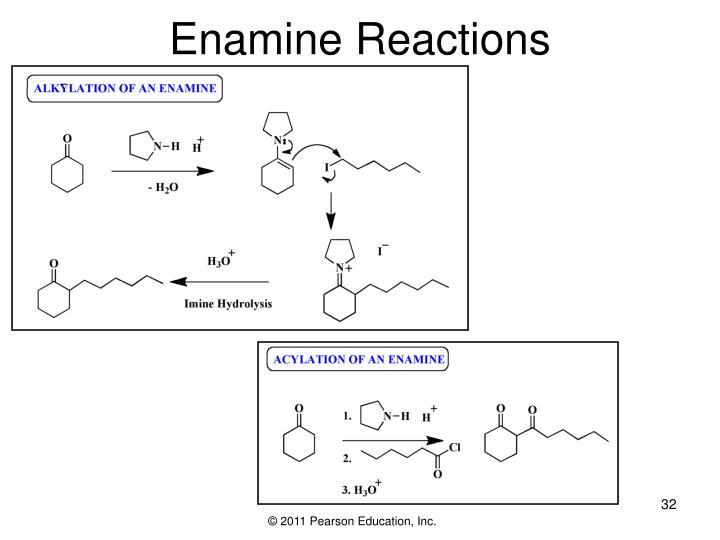 Enamine Reactions
