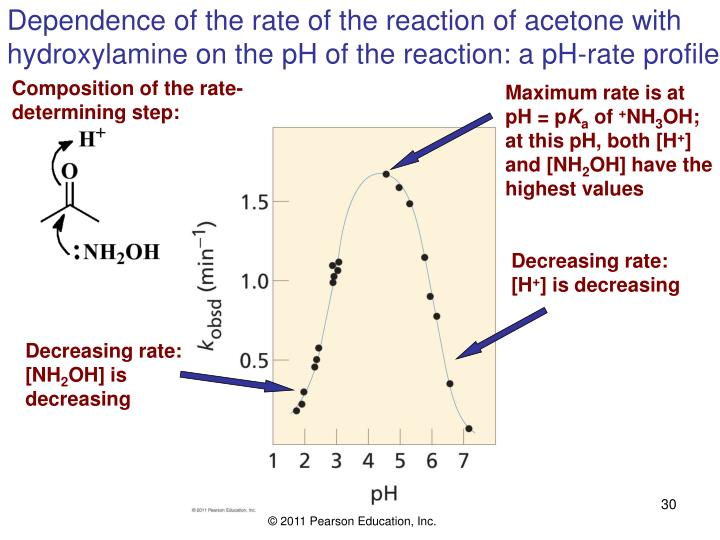 Dependence of the rate of the reaction of acetone with