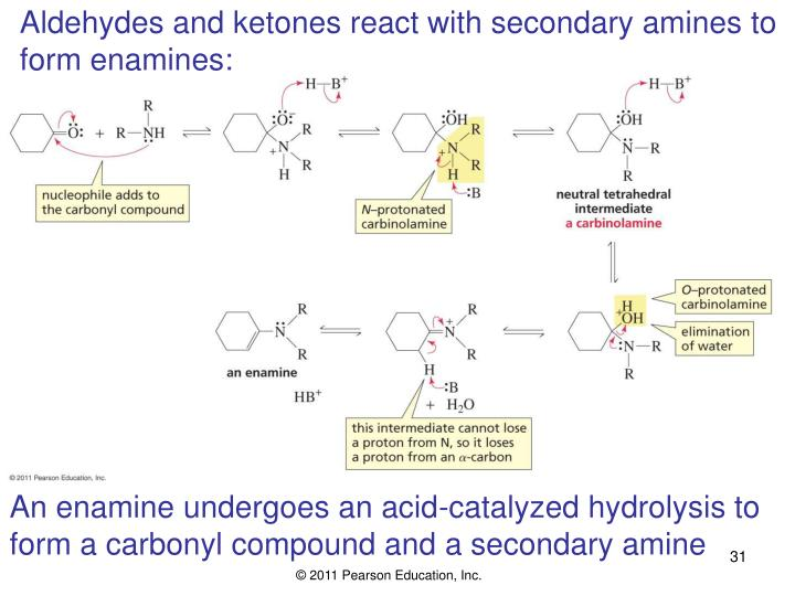 Aldehydes and ketones react with secondary amines to