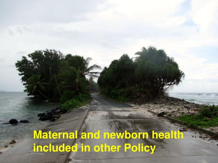 Maternal and newborn health  included in other Policy