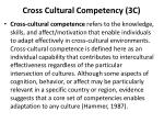 cross cultural competency 3c3