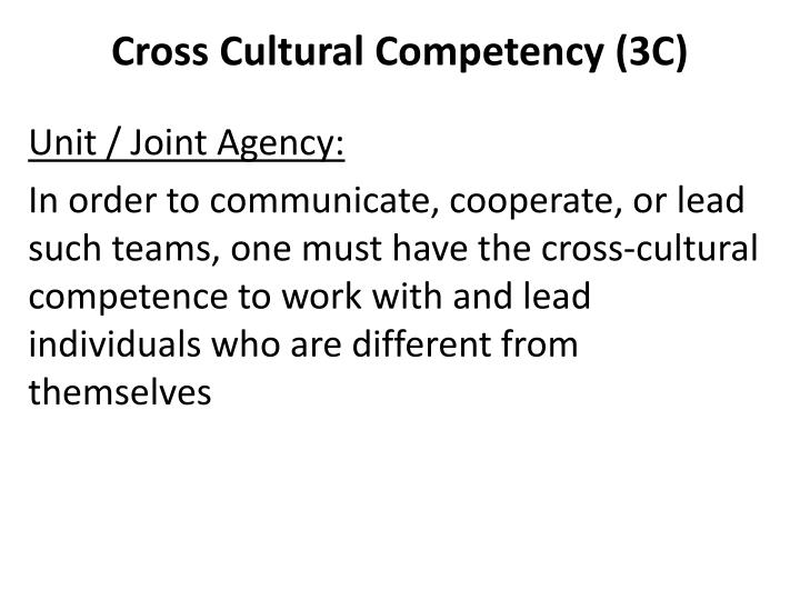 Cross Cultural Competency (3C)