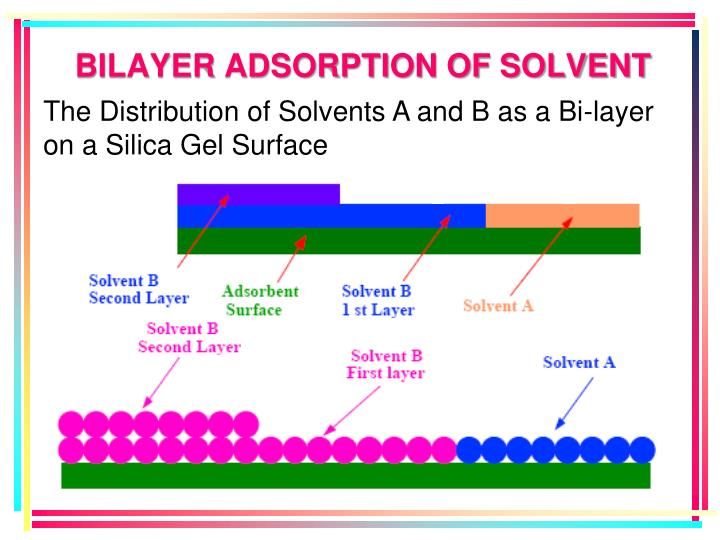 BILAYER ADSORPTION OF SOLVENT