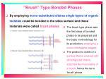 brush type bonded phases