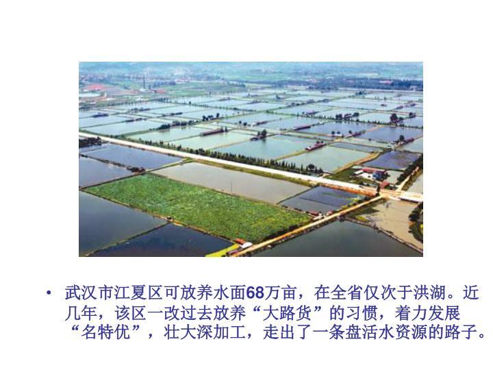 武汉市江夏区可放养水面