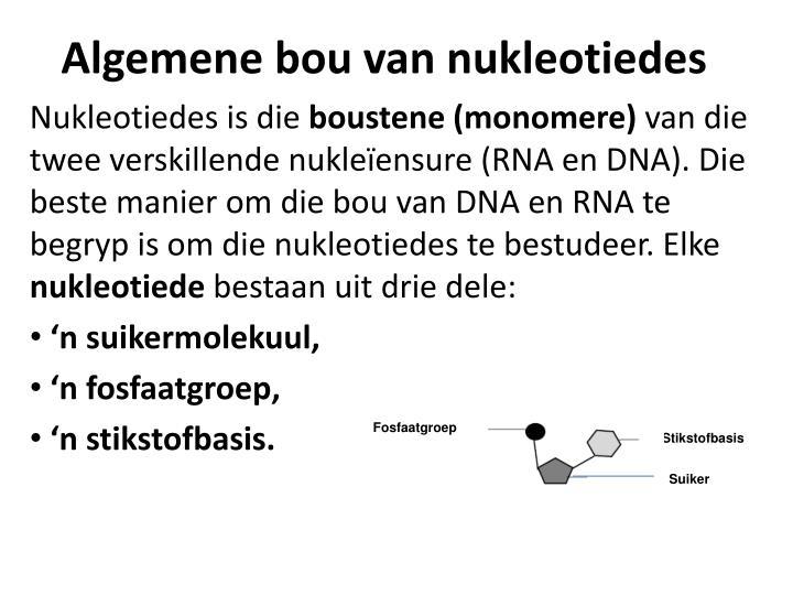 Algemene bou van nukleotiedes
