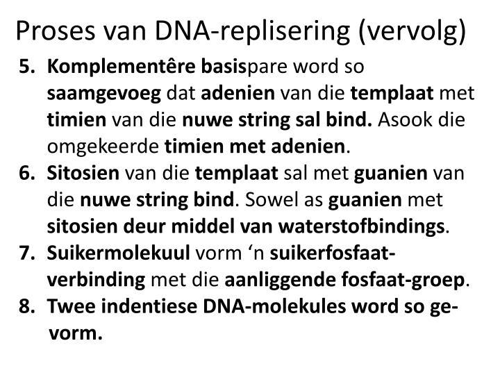 Proses van DNA-replisering (vervolg)