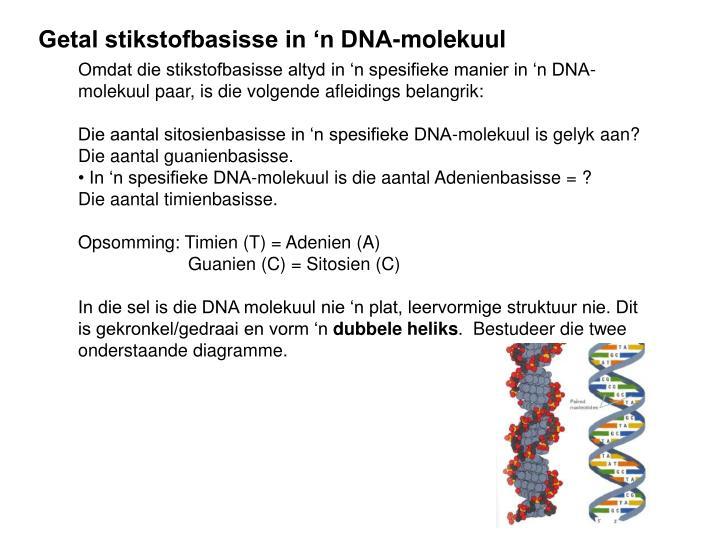 Getal stikstofbasisse in 'n DNA-molekuul
