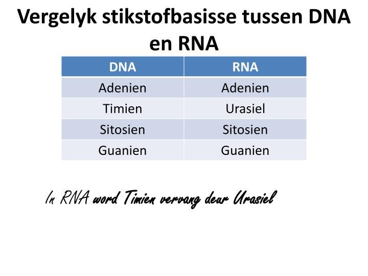 Vergelyk stikstofbasisse tussen DNA en RNA