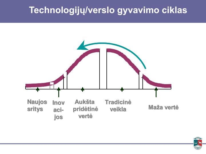 Technologijų/verslo gyvavimo ciklas