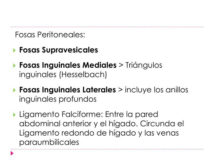 Fosas Peritoneales: