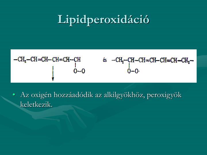 Lipidperoxidci