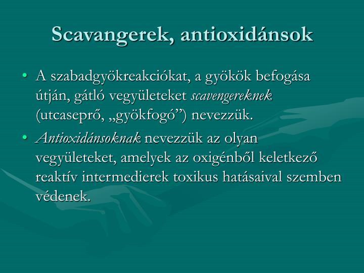 Scavangerek, antioxidnsok