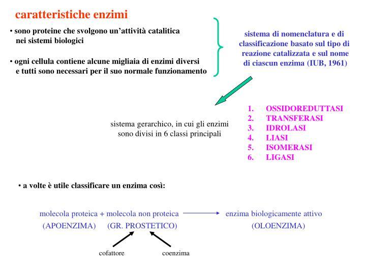 caratteristiche enzimi
