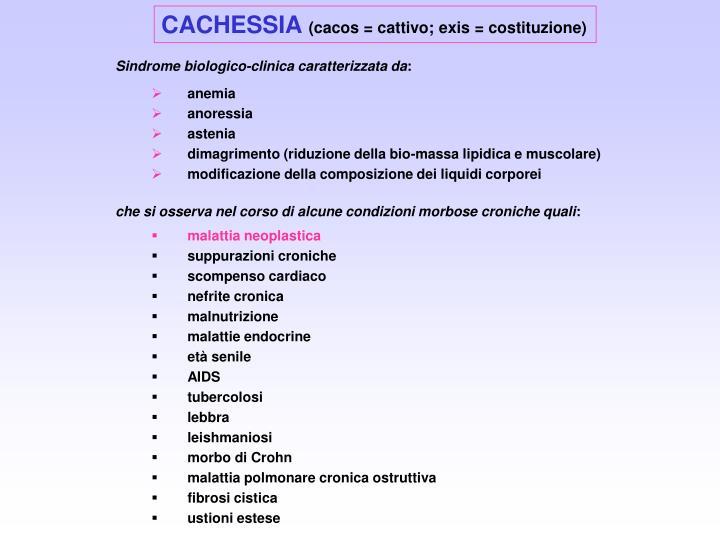 CACHESSIA