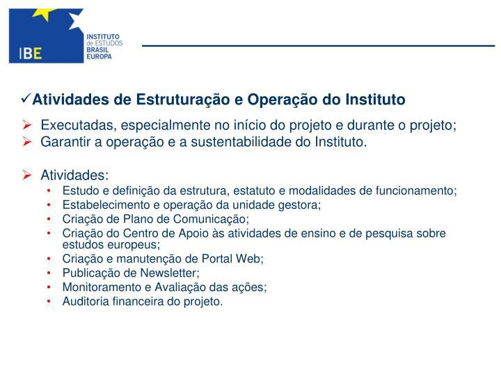 Atividades de Estruturação e Operação do Instituto