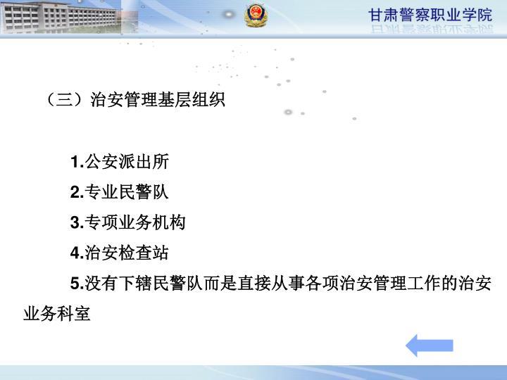 (三)治安管理基层组织