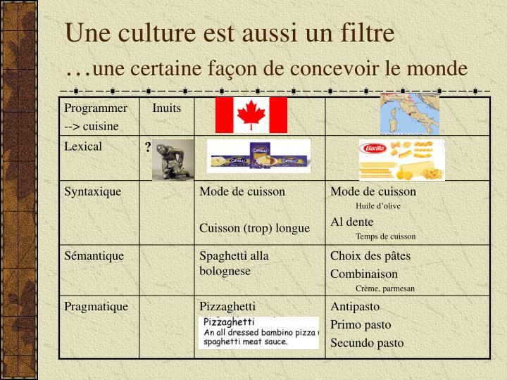 Une culture est aussi un filtre