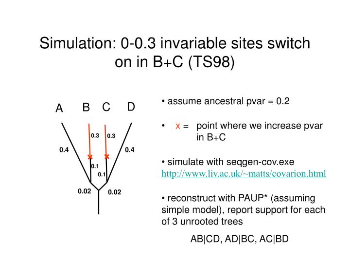 Simulation: 0-0.3 invariable sites switch on in B+C (TS98)