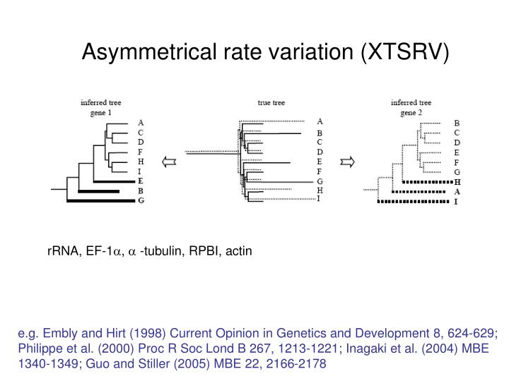 Asymmetrical rate variation (XTSRV)