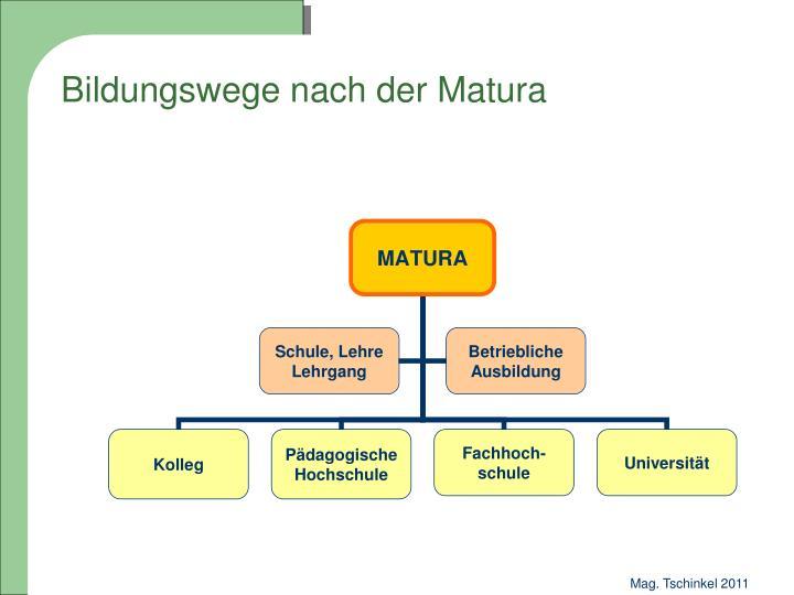 Bildungswege nach der Matura