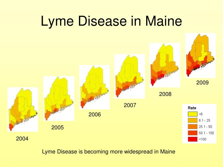 Lyme Disease in Maine