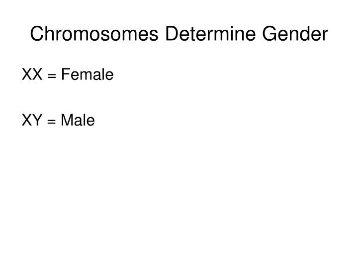 Chromosomes Determine Gender