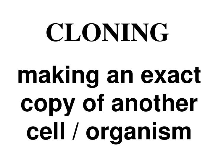 making an exact copy of another cell / organism