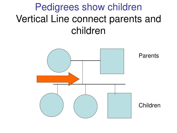 Pedigrees show children