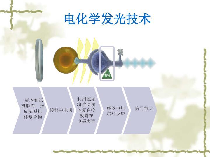 电化学发光技术